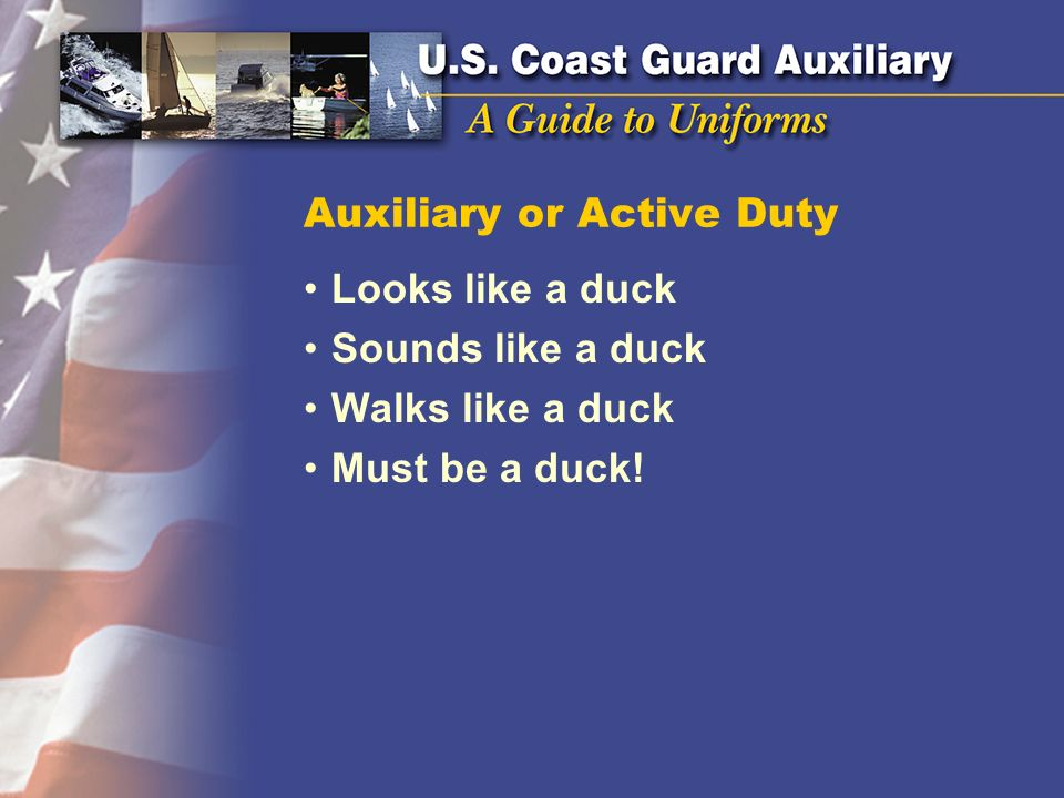 Auxiliary or Active Duty