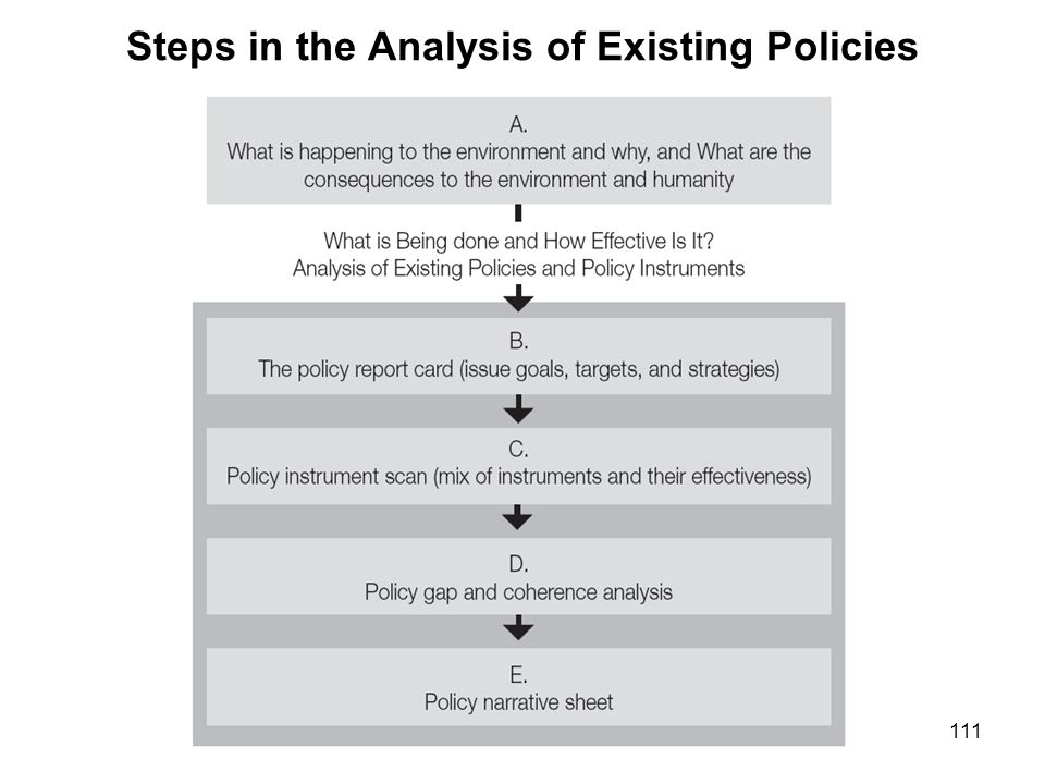 Steps in the Analysis of Existing Policies