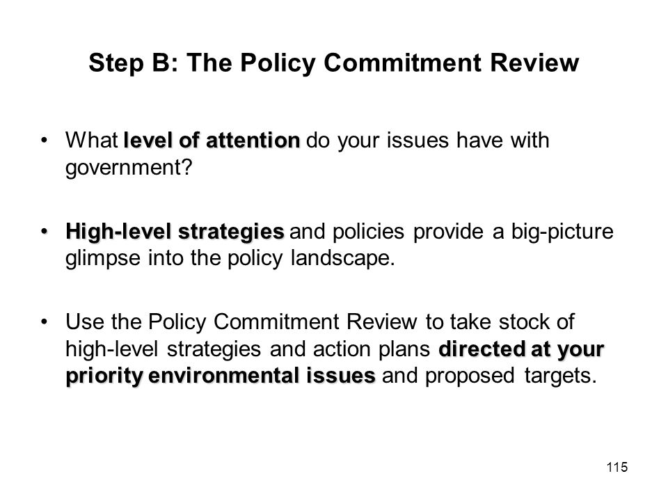Step B: The Policy Commitment Review