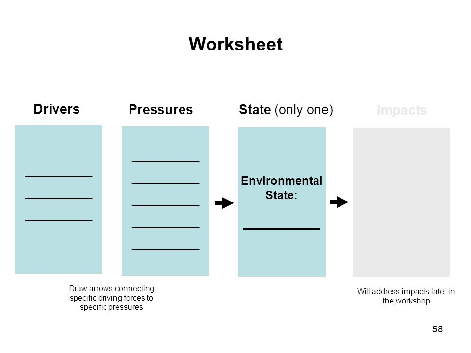 Worksheet Drivers Pressures State (only one) Impacts Environmental