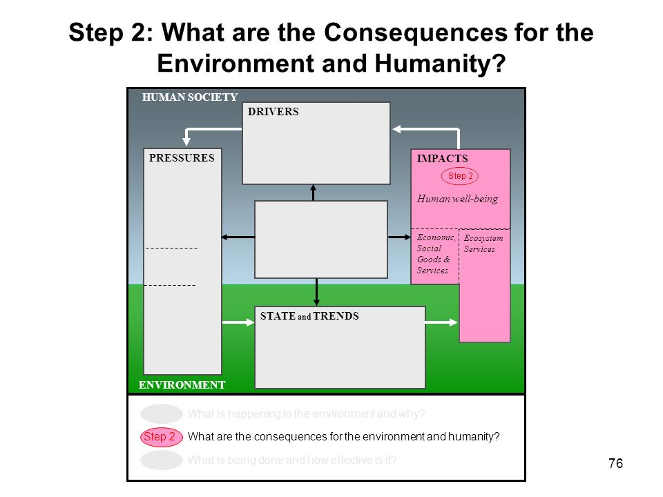 Step 2: What are the Consequences for the Environment and Humanity