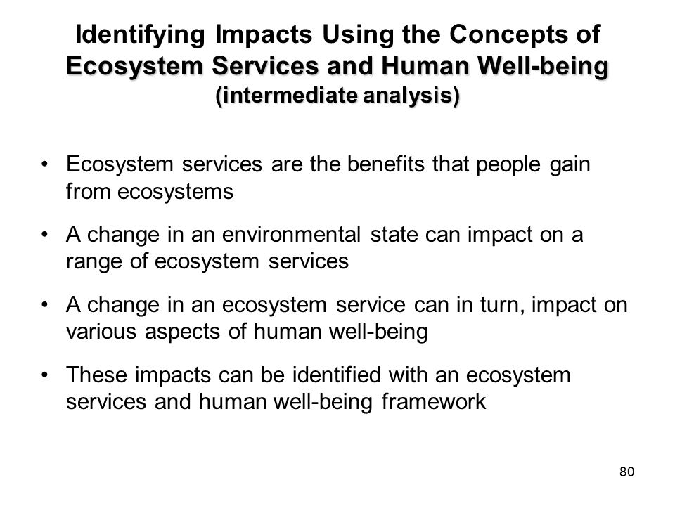 Identifying Impacts Using the Concepts of Ecosystem Services and Human Well-being (intermediate analysis)