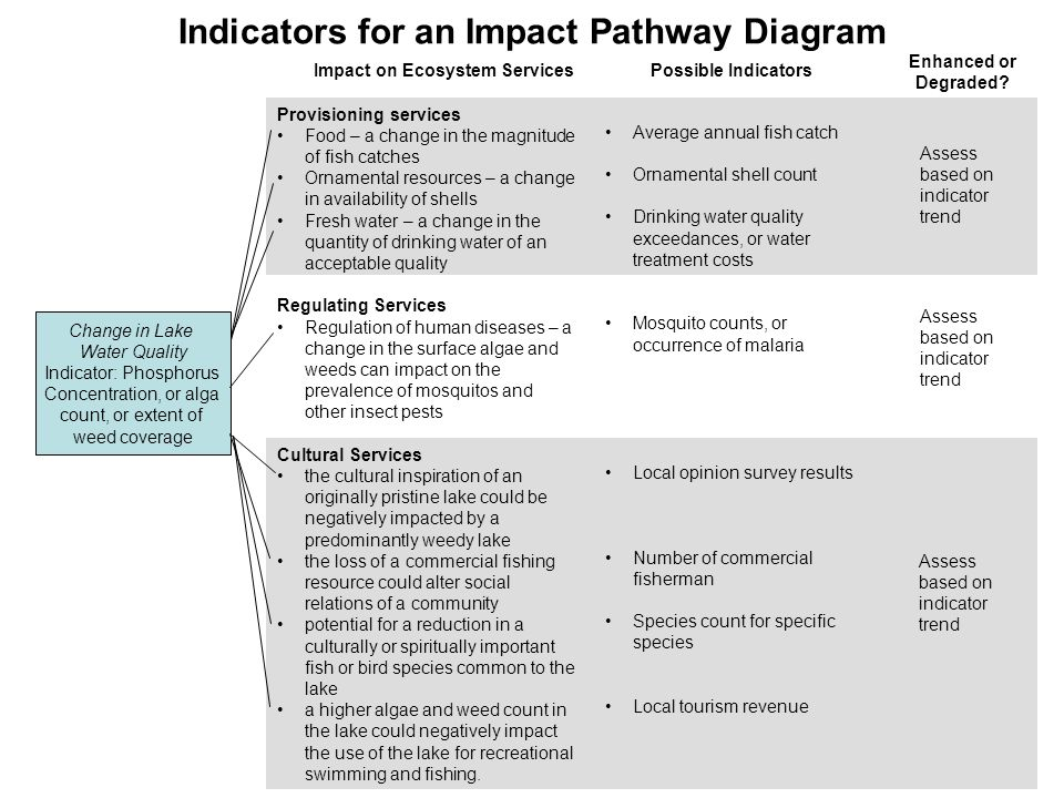 Indicators for an Impact Pathway Diagram