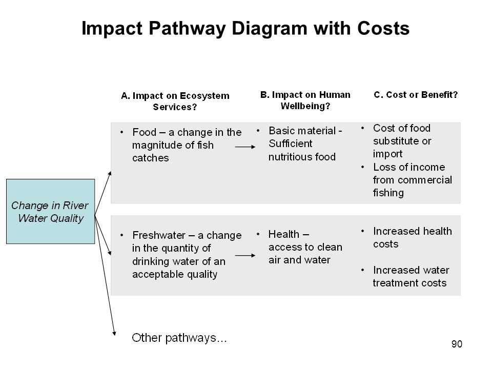 Impact Pathway Diagram with Costs