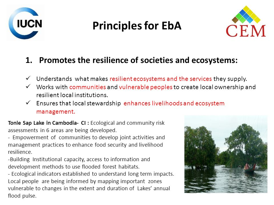 Principles for EbA Promotes the resilience of societies and ecosystems: Understands what makes resilient ecosystems and the services they supply.