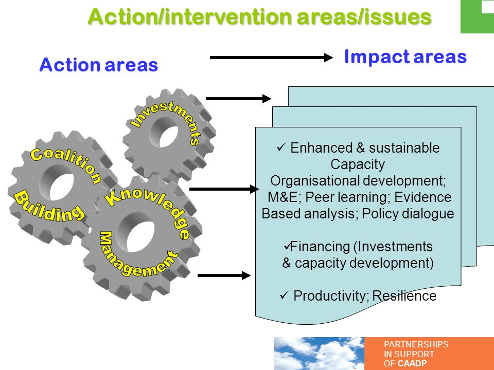 Investments Coalition Building Knowledge Management