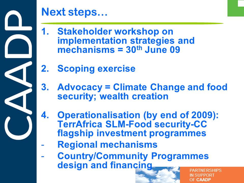 Next steps… Stakeholder workshop on implementation strategies and mechanisms = 30th June 09. Scoping exercise.