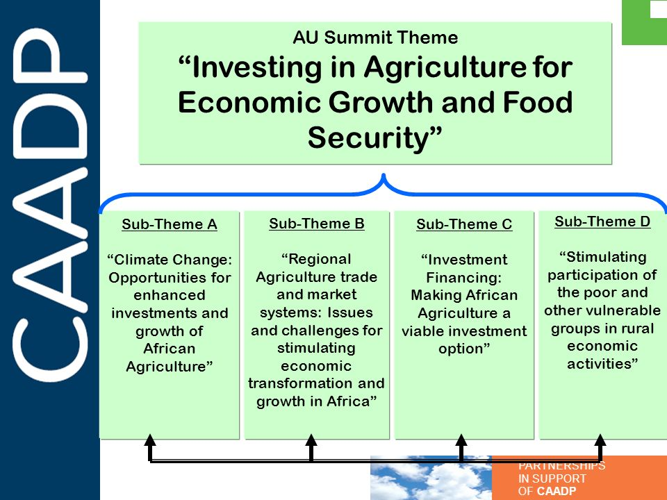 Investing in Agriculture for Economic Growth and Food Security