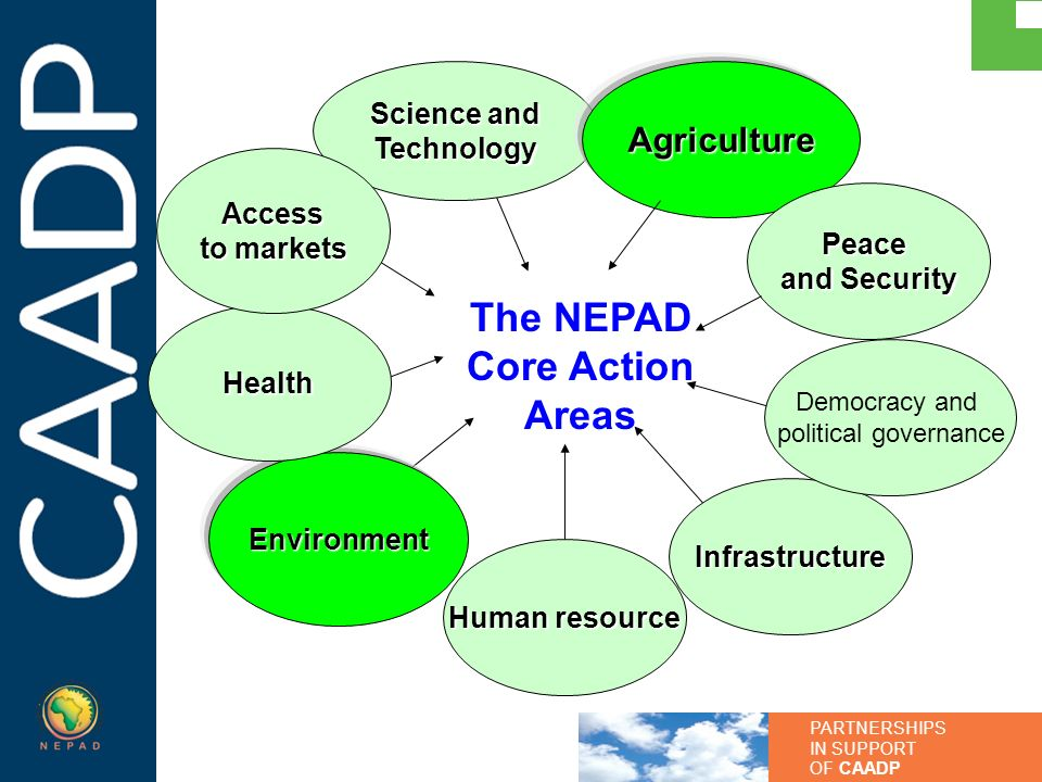 The NEPAD Core Action Areas