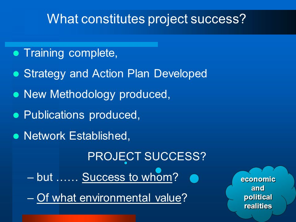 What constitutes project success