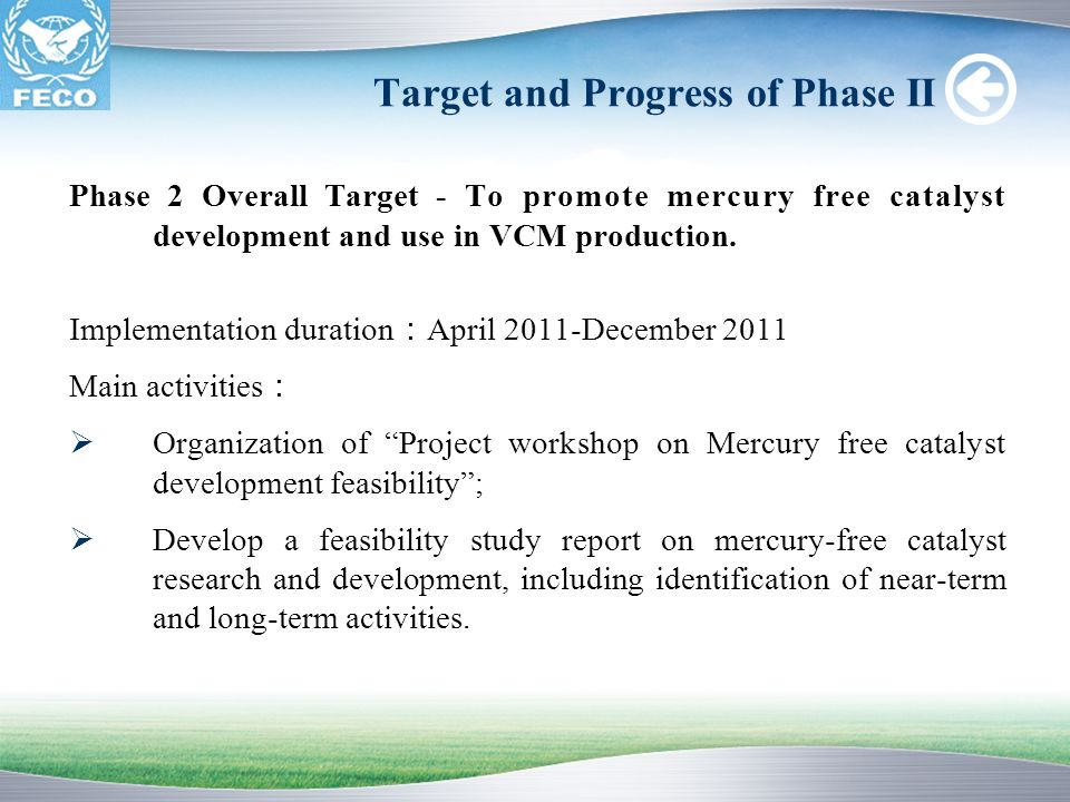 Target and Progress of Phase II