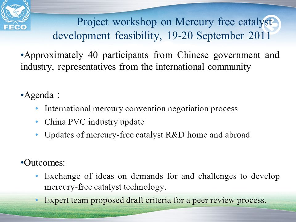 Project workshop on Mercury free catalyst development feasibility, 19-20 September 2011
