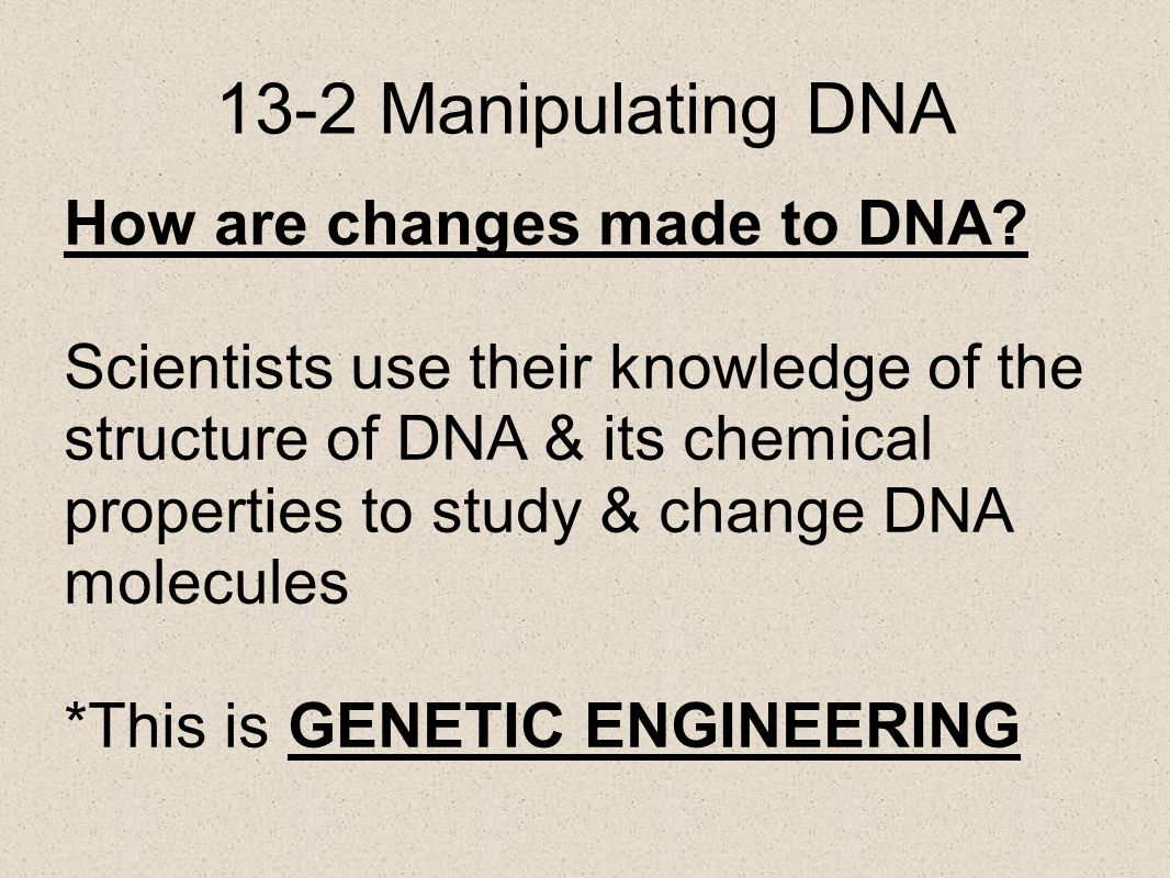 13-2 Manipulating DNA How are changes made to DNA