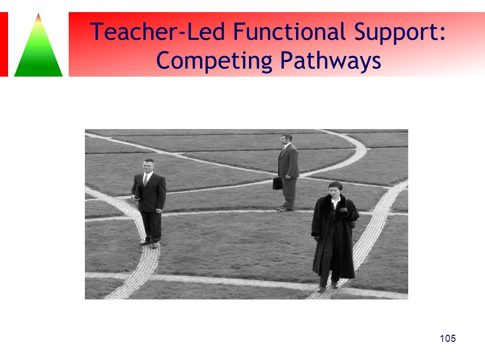 Teacher-Led Functional Support: Competing Pathways