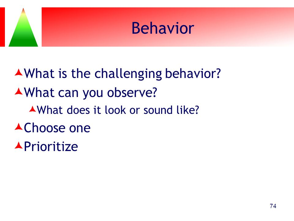 Behavior What is the challenging behavior What can you observe