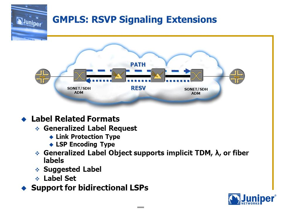 GMPLS: RSVP Signaling Extensions