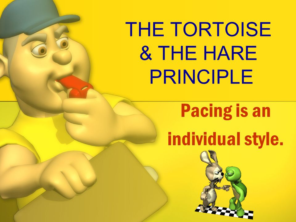 THE TORTOISE & THE HARE PRINCIPLE