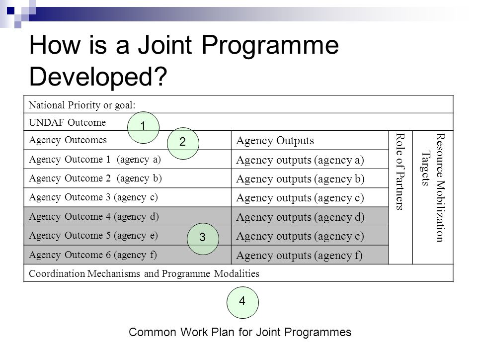 How is a Joint Programme Developed