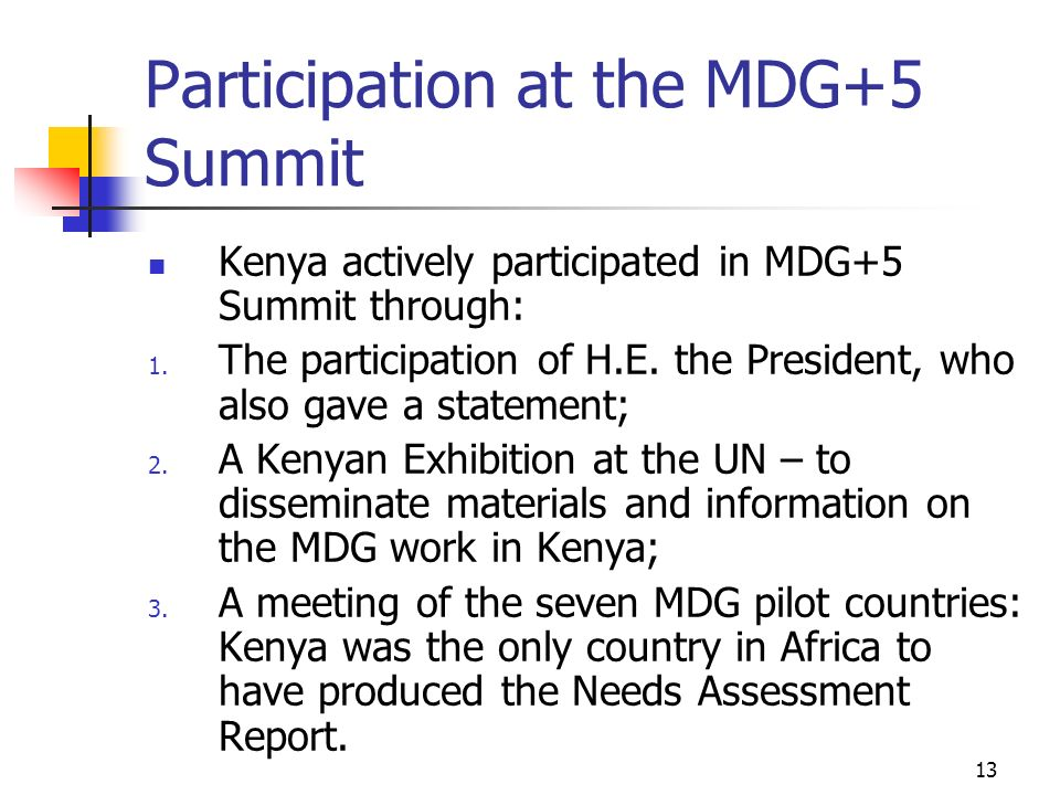 Participation at the MDG+5 Summit