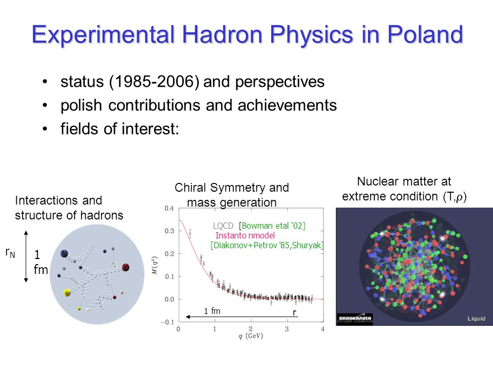 Experimental Hadron Physics in Poland
