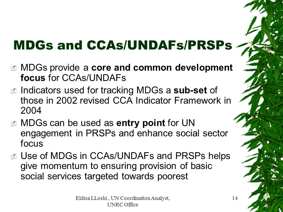 MDGs and CCAs/UNDAFs/PRSPs