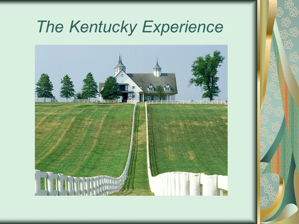 The Kentucky Experience