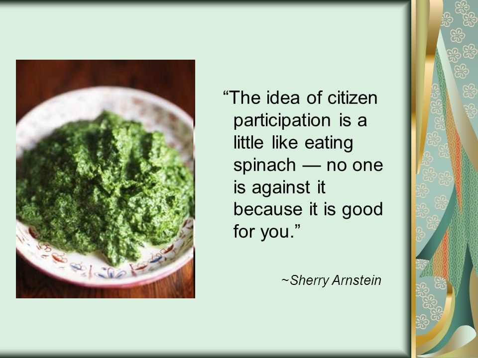 The idea of citizen participation is a little like eating spinach — no one is against it because it is good for you.