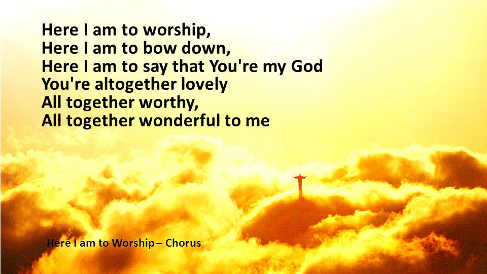 Here I Am To Worship Ppt Video Online Download