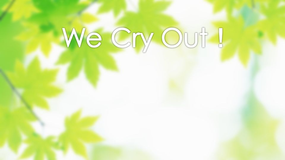 We Cry Out!