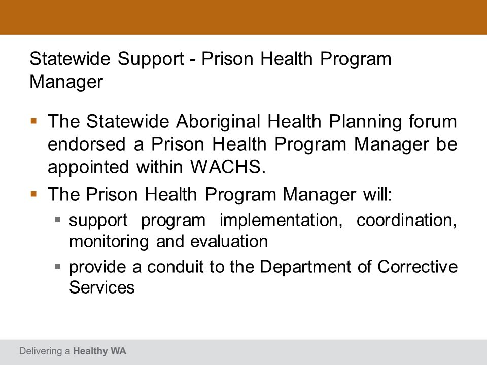 Statewide Support - Prison Health Program Manager