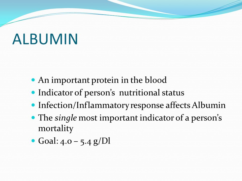 ALBUMIN An important protein in the blood