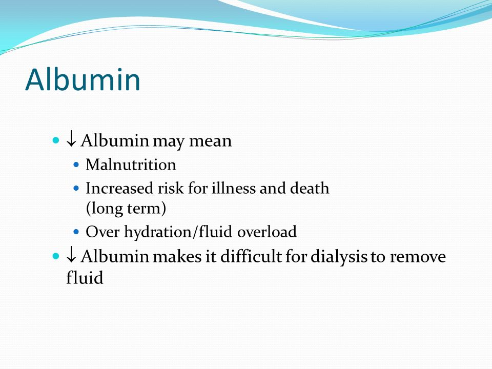 Albumin  Albumin may mean