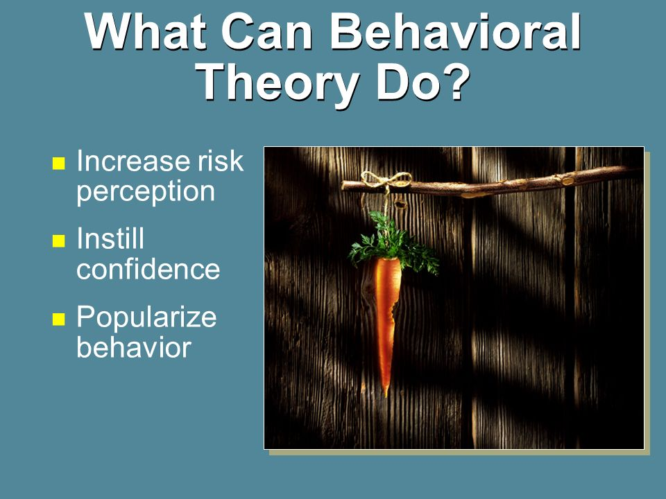 What Can Behavioral Theory Do
