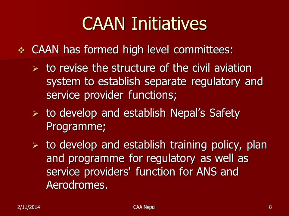 CAAN Initiatives CAAN has formed high level committees: