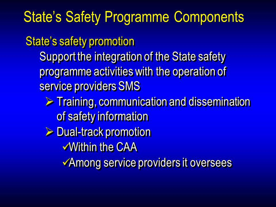 State's Safety Programme Components