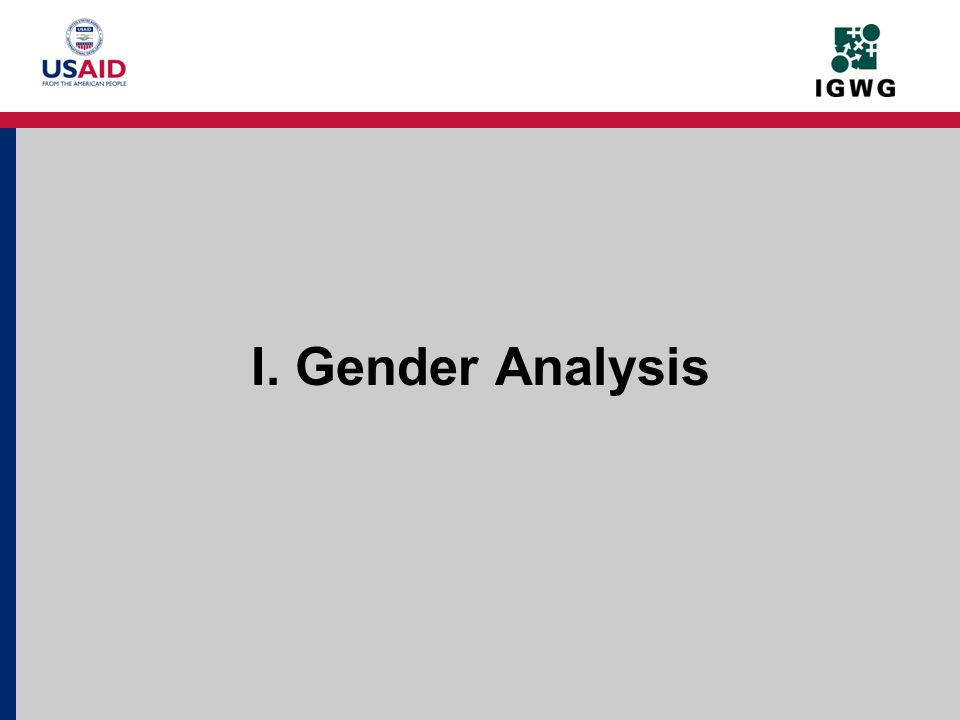 I. Gender Analysis