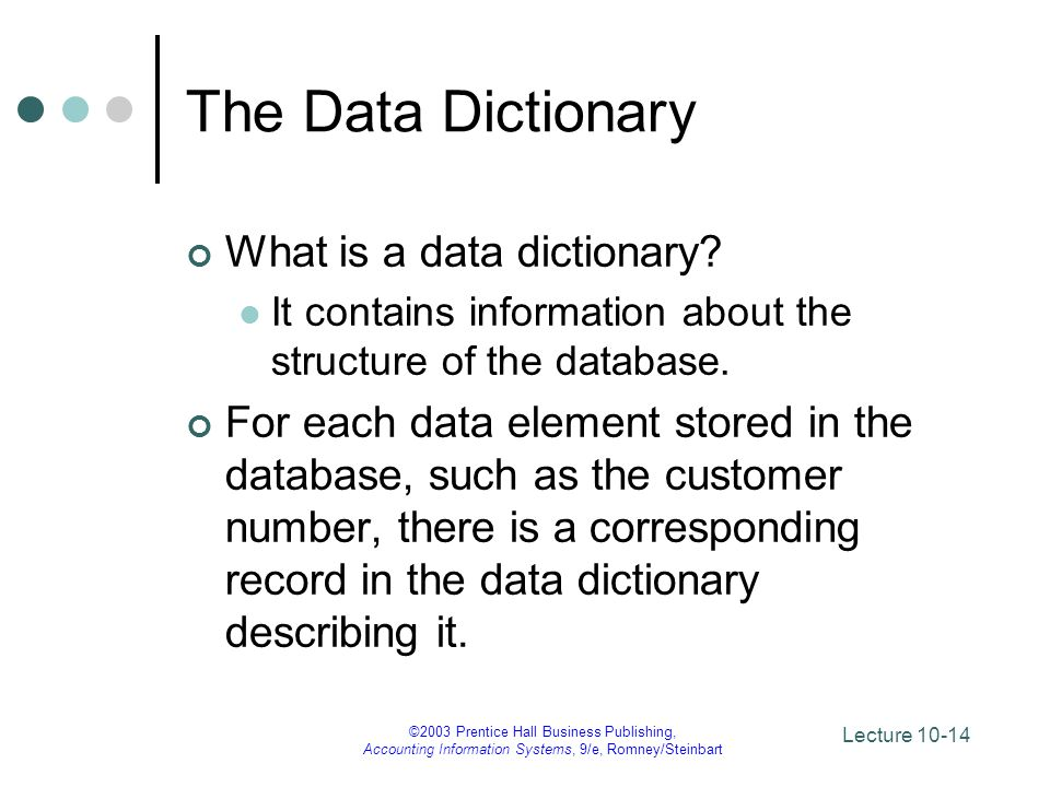 The Data Dictionary What is a data dictionary