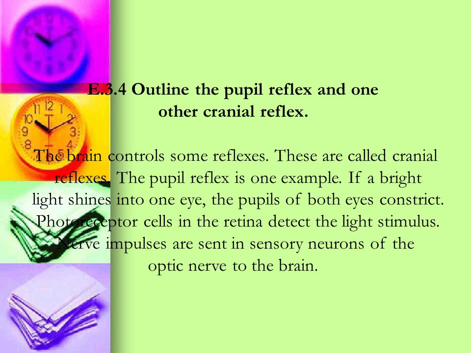 E.3.4 Outline the pupil reflex and one
