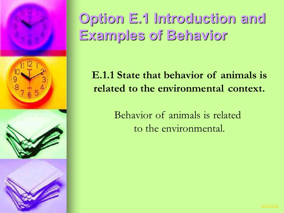 Option E.1 Introduction and Examples of Behavior