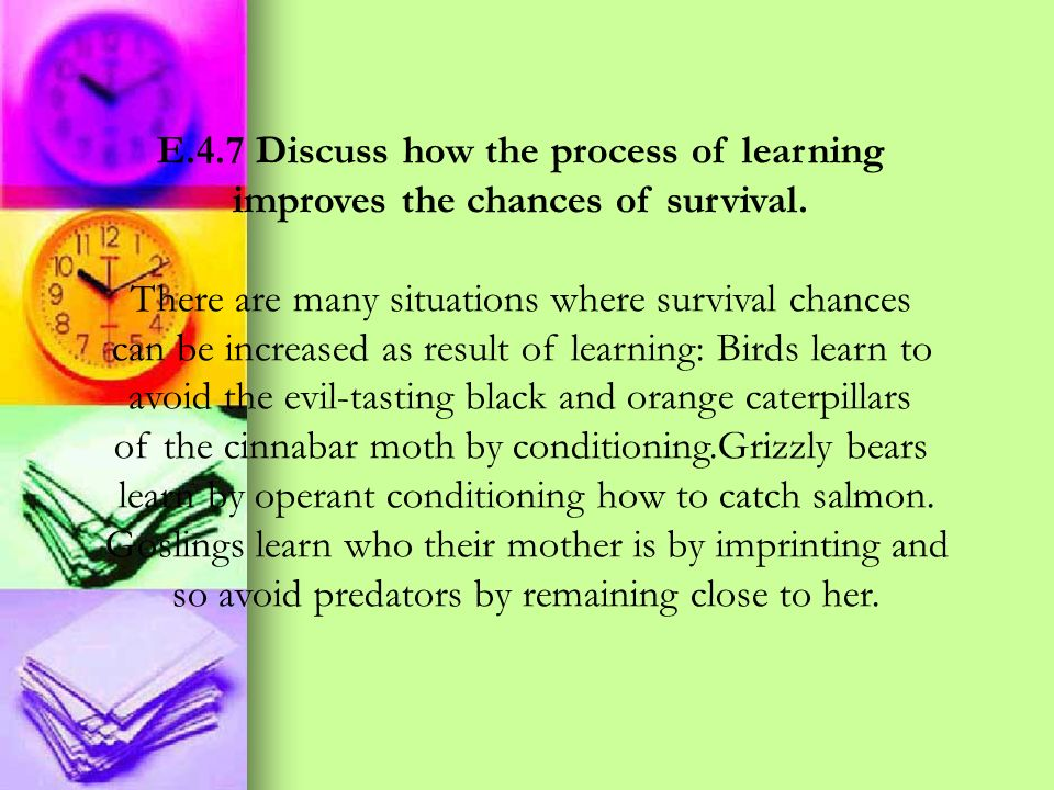 E.4.7 Discuss how the process of learning