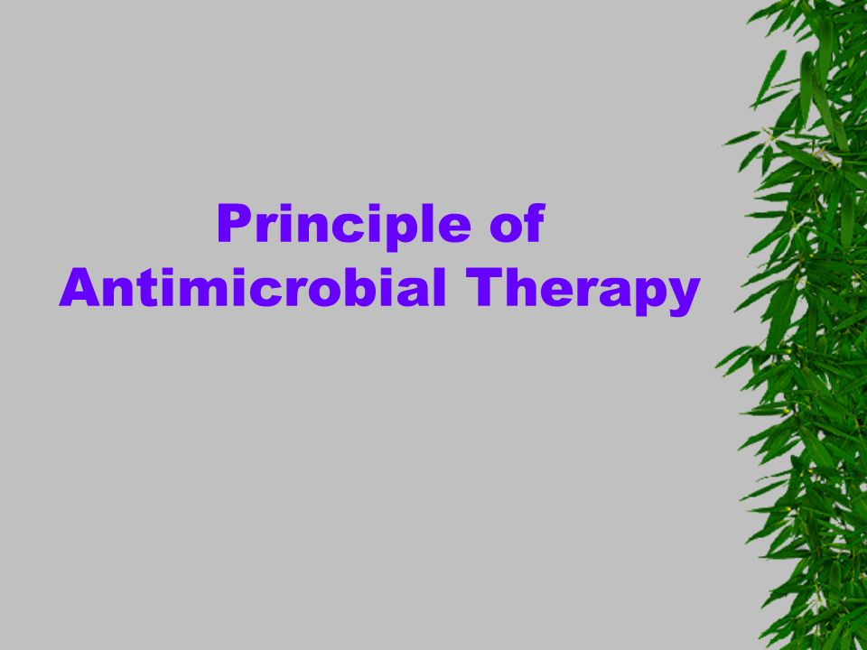 Principle of Antimicrobial Therapy