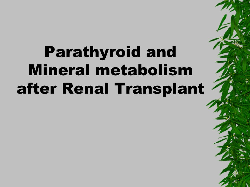 Parathyroid and Mineral metabolism after Renal Transplant