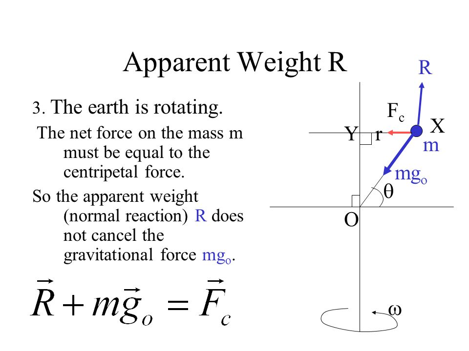Apparent Weight R R Fc X Y r m mgo  O  3. The earth is rotating.