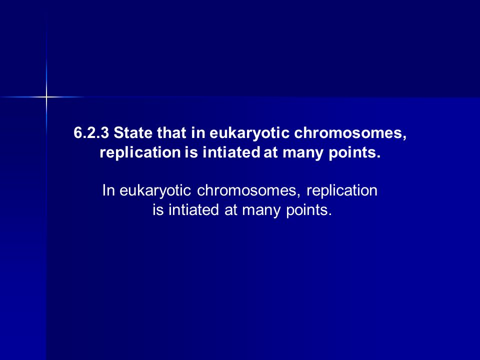 6.2.3 State that in eukaryotic chromosomes,