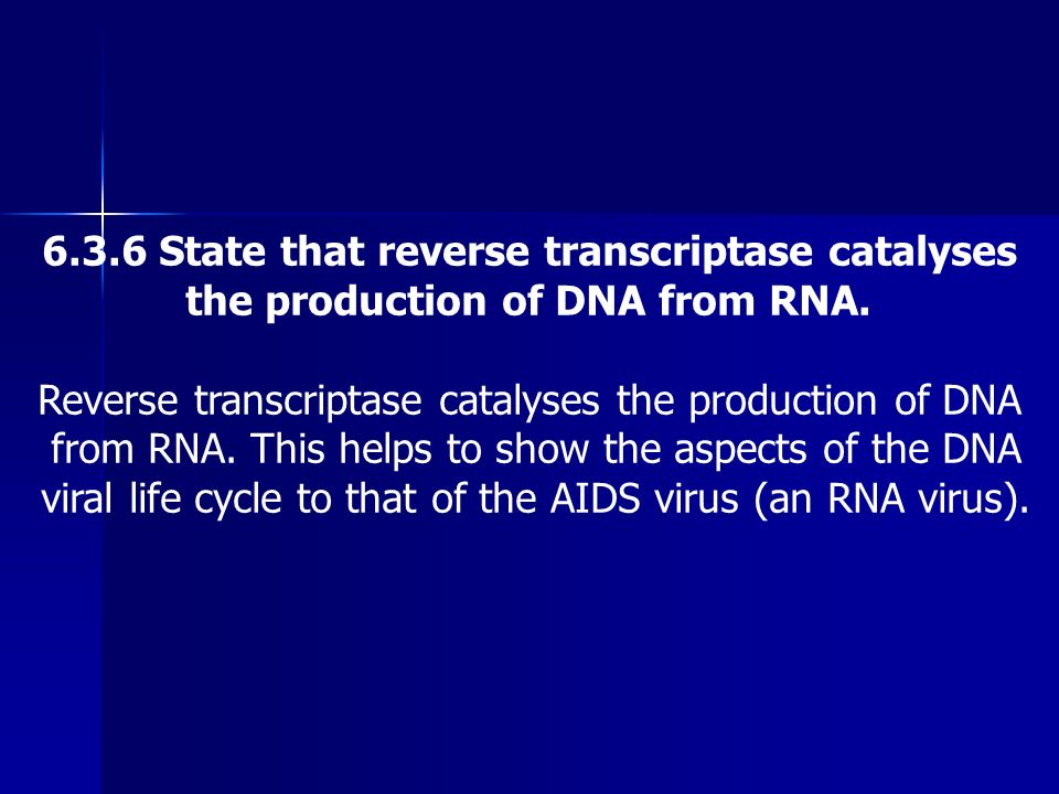 6.3.6 State that reverse transcriptase catalyses