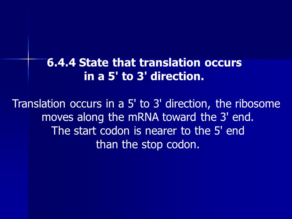 6.4.4 State that translation occurs