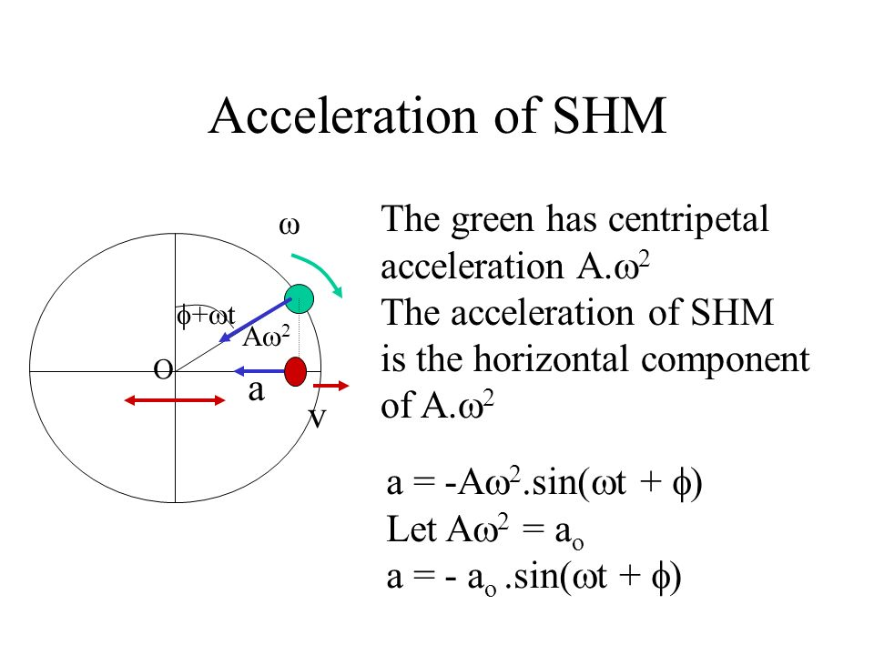 Acceleration of SHM The green has centripetal acceleration A.2