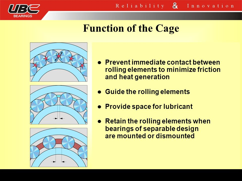 Function of the Cage