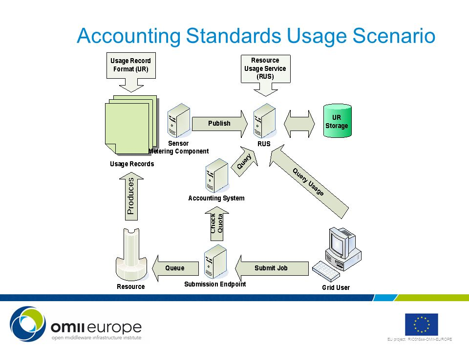 Accounting Standards Usage Scenario