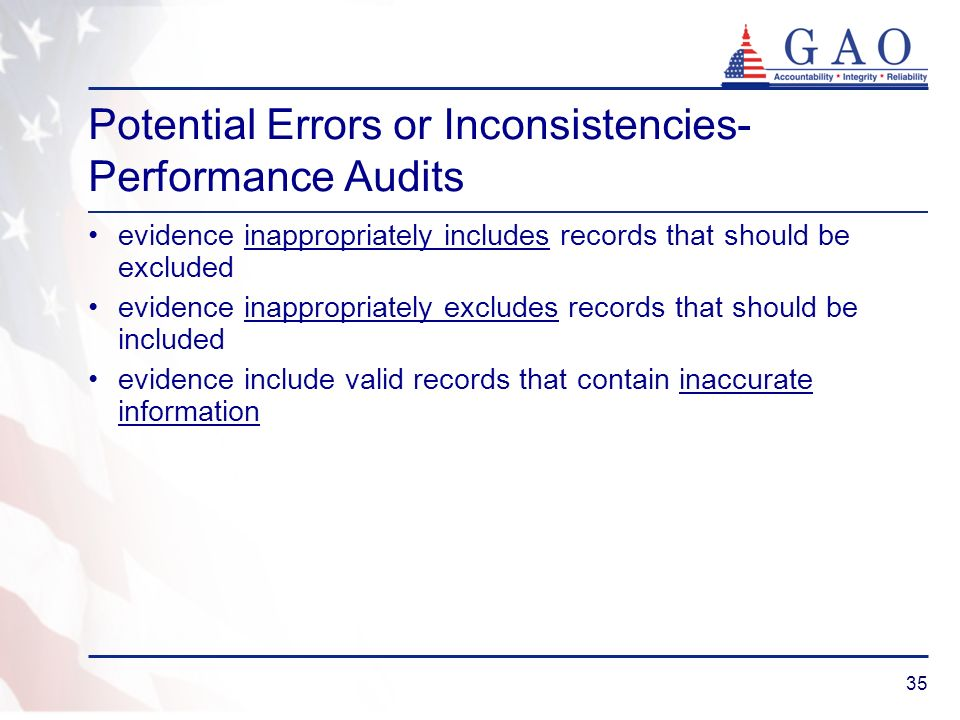Potential Errors or Inconsistencies- Performance Audits